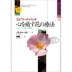 心を癒す花の療法