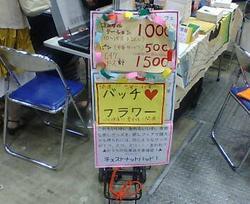 20080726180716.JPG